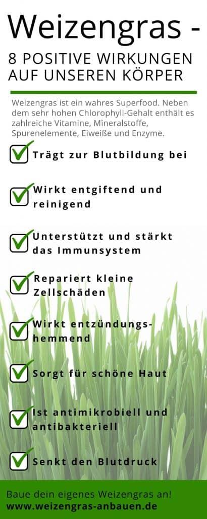 Weizengras - 8 positive Wirkungen Infografik
