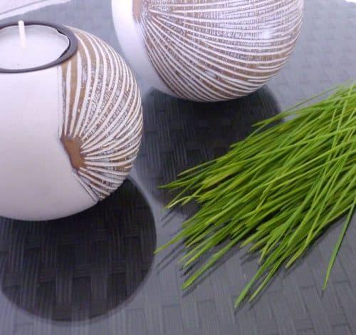 Weizengras Wirkung