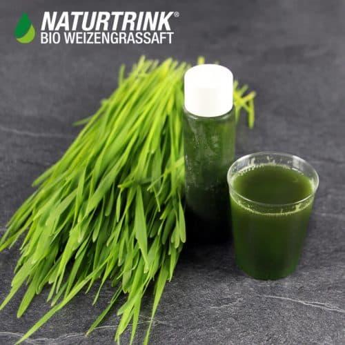 Weizengras kaufen 30 ml Naturtrink