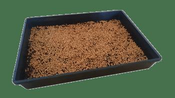 Weizenkörner aussähen pflanzwanne